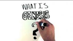 What is Genesis Framework?